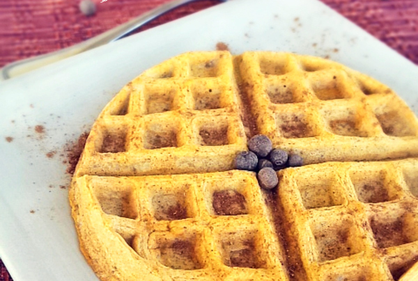 pumpkin protein waffles (paleo recipe!)