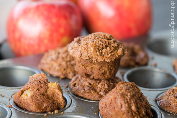 gluten free apple cinnamon muffin recipe